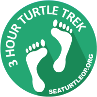 4 Hour Turtle Trek 6/25/16